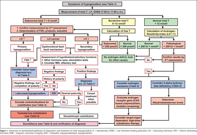 A Standardized Algorithm for the Diagnosis, Monitoring